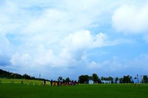 今日は朝から青空。さあ、トレーニングを始めるぞ!